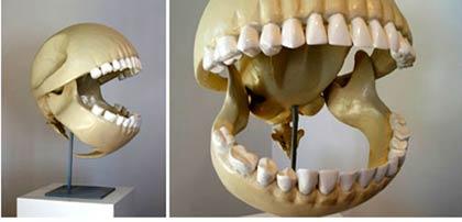 pacman sein skelett