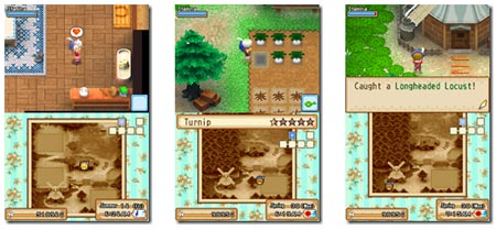 screens: harvest moon grand bazaar