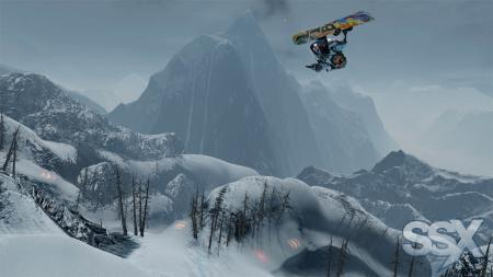 preview: ssx