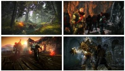 screens: the witcher 2